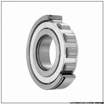 600 mm x 730 mm x 60 mm  NKE NCF18/600-V cylindrical roller bearings
