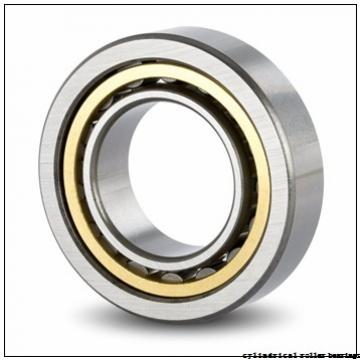 55 mm x 120 mm x 43 mm  KOYO NUP2311 cylindrical roller bearings